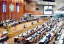 Cuba aprueba norma de bienestar animal tras activismo social